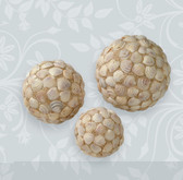 Smooth Seashell Decorative Ball