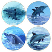 Assorted Dolphins Round Sandstone Coasters
