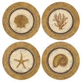 Assorted Seashells Round Sandstone Coasters