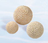 Sea Shell Decorative Ball