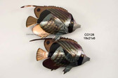 Striped Butterfly Fish Pair Stainless Steel Wall Sculpture
