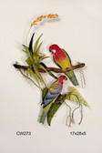 Rosella Parrots with Bromeliads Tropical Wall Sculpture