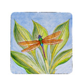 Dick's Dragonfly Coasters - Set of 4