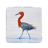 Reddish Egret Coasters - Set of 4