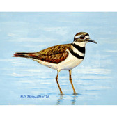 Killdeer Place Mats - Set of 2