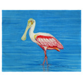 Dick's Spoonbill Place Mats - Set of 2