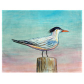 Royal Tern Place Mats - Set of 2
