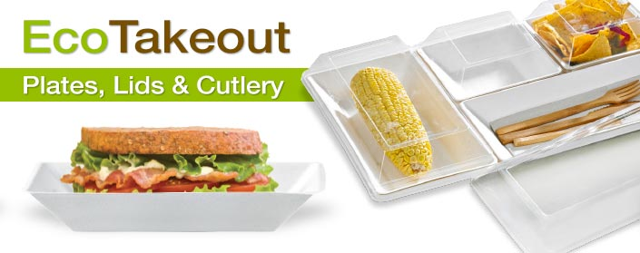 Takeout Dishes
