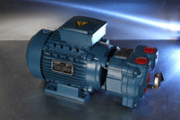 NEW Travaini TRMX 257/1 Vacuum Pump