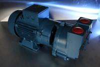 REBUILD Travaini TRMB 32-75 Vacuum Pump
