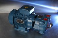 REBUILD Travaini TRMX-257/1 Vacuum Pump