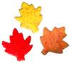 > Fall Leaves
