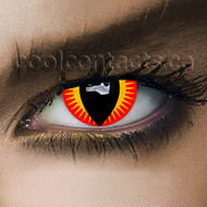 Red Dragon Contact Lenses