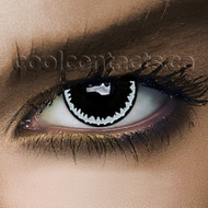 Black Hole Contact Lenses