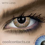 Dark Brown Contact Lenses