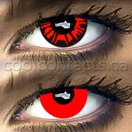 Loco Vampire Mix Contact Lenses