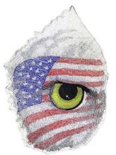 Eye Of The American Eagle
