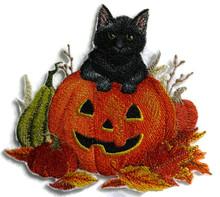 Too Cute To Spook Kitten