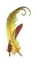 BirdofParadiseFeathersinWatercolor