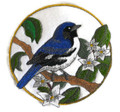 Black billed Magpie And Lupine Circle