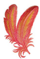 Flamingo Feathers in Watercolor