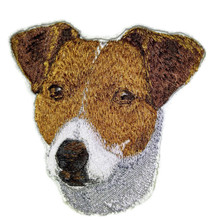 Jack Russell Dog Face