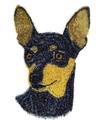 Miniature Pinscher Dog Face