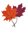 Maple Leaf Pair