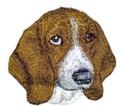 Basset Hound  Dog Face
