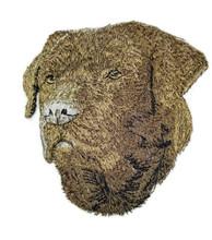 Labrador Retriever Brown