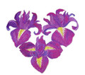 Heart Of Irises