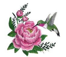 HummingbirdandPeony