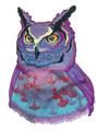 Sunset Owl