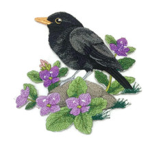 British Blackbird and Brooklime