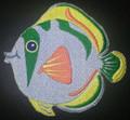 Tammy Tropical Fish