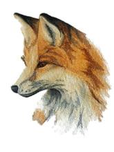 Wild Beauty Fox
