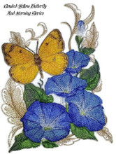 Clouded Yellow Butterfly And Morning Glories