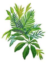 Watercolor Tropical Leaves -2