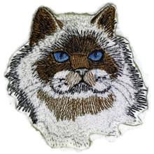Himalayan Cat Face