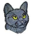 Bombay Cat Face