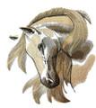 Wild at Heart Stallion