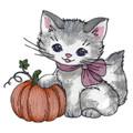 Kitty with Pumpkin