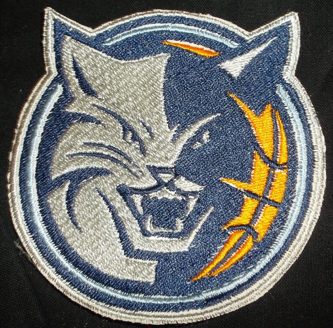 Charlotte Bobcats Logo Iron On Patch Beyond Vision Mall