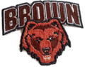 Brown Bears Logo Iron On Patch