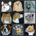 Beautiful Dogs Face collection (P-S)
