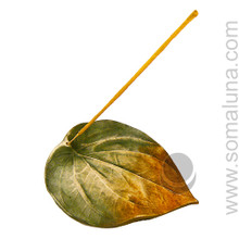 Large Leaf Incense Burner
