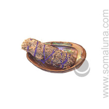 Abalone Shell, large