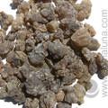 Frankincense, Oman Hougari Black (Hojary)