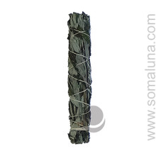 Black Sage (Mugwort) Large Smudge Wand