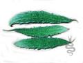 Indian Long Green Bitter Melon Seeds